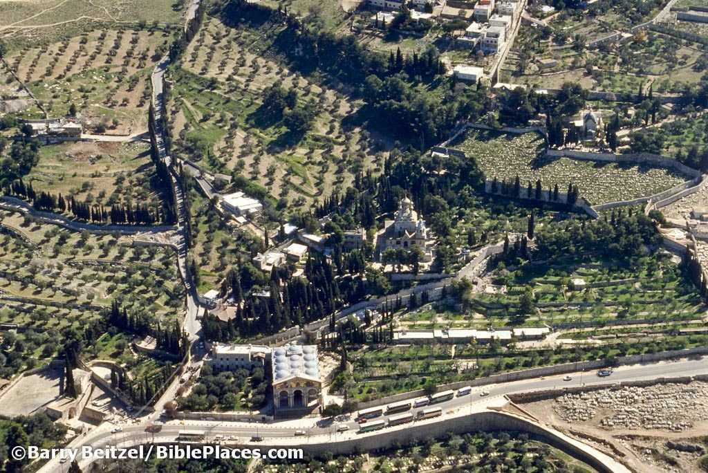 Aerial view of the garden of Gethsemane